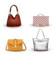woman bag set on white background vector image vector image