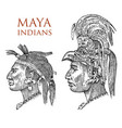 maya vintage style aztec culture portrait of a vector image