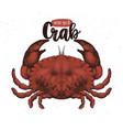 seafood crab retro vector image