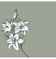 background with lilies vector image