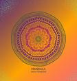 Colorful Isolated Circle Mandala Design vector image