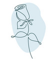 flower design rose drawn in minimalist line style vector image