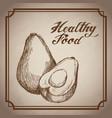 hand drawn avocado healthy food fresh vector image vector image