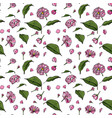 pink sakura flowers and green leaflets vector image
