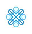 snowflake abstract sign vector image