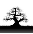 tree silhouette and grass vector image