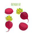 beetroot set made in cartoon flat style vector image vector image