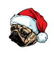 christmas greeting card breed dog pug wearing a vector image vector image