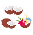coconut fruits collection in cartoon style vector image