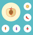 flat icons aubergine citrus root and other vector image vector image