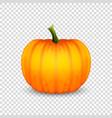 glossy cartoon halloween pumkin icon vector image