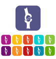 knee joint icons set flat vector image vector image