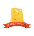 piece of swiss cheese vector image vector image
