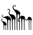set silhouettes of elephants vector image vector image
