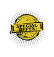 Special Offer stamp badges vector image