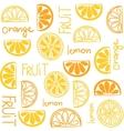 Citrus fruit seamless pattern vector image