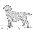 dog labrador antistress coloring book vector image vector image