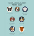 dogs by country of origin walsh dog breeds vector image