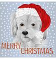 happy dog santa merry christmas and new yar vector image vector image