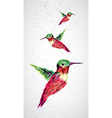 Humming bird geometric vector image vector image