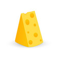 swiss cheese piece with holes vector image vector image