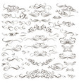 big collection decorative flourishes and swirls vector image vector image