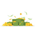 bundles money with lots coins and flying vector image vector image