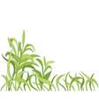 cartoon grass background vector image vector image