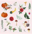 hand drawn set cute autumn pictures vector image