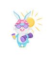 happy rabbit on beach summer and heat concept