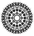 kalocsai hungarian floral mandala design vector image