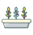 outdoor potted plants icon cartoon style vector image