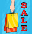 sale bags packages in the hands of women pop art vector image