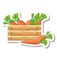 sticker template with carrots in wooden box vector image