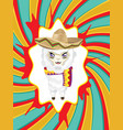 cartoon alpaca in sombrero vector image vector image