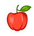 cartoon ripe apple vector image
