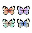 Collection exotic colorful butterflies