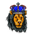 color king lion on white vector image vector image