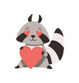 cute raccoon with heart shaped eyes holding red vector image