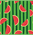 green watermelon striped background vector image vector image