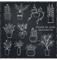 Set of plants in a pot Hand drawn doodle sketch vector image vector image