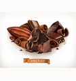 chocolate bars and pieces shavings cocoa fruit 3d vector image vector image
