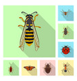 design of insect and fly icon set of vector image