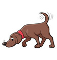 dog sniffing the ground vector image vector image