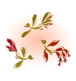 Fairy glass birds and flowers EPS10 vector image vector image
