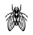 fly insect tattoo template vector image vector image