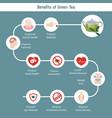 foods infographics green tea foods infographics vector image vector image