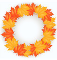red and yellow autumn leaves pattern vector image vector image