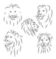set of black line lions on white background vector image vector image