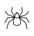 spider outline icon insect symbol vector image vector image